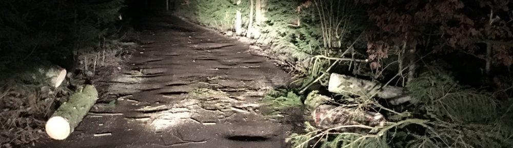 Einsatz – TH Klein – Sturmschaden
